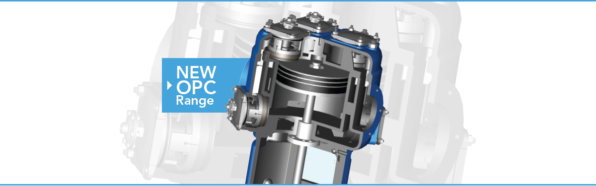 6-15 bar oil free air piston compressor